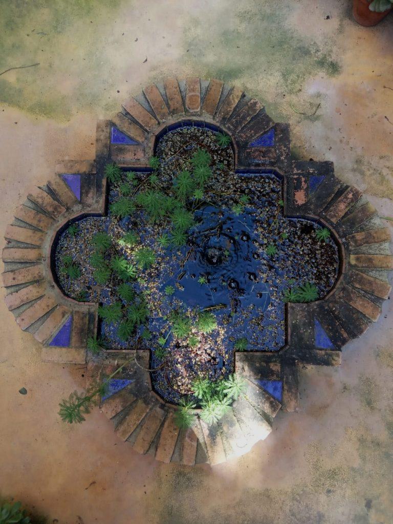 """La Almunya del Sur: un jardín andalusí en medio del """"mar de plástico""""."""